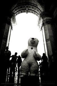Polar bear at Arco Triunfal da Rua Augusta, Lisbon 2019