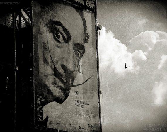 Dali, Paris 2013