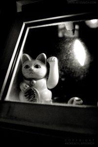 Goodbye Kitty, Tokyo, Japan 2012