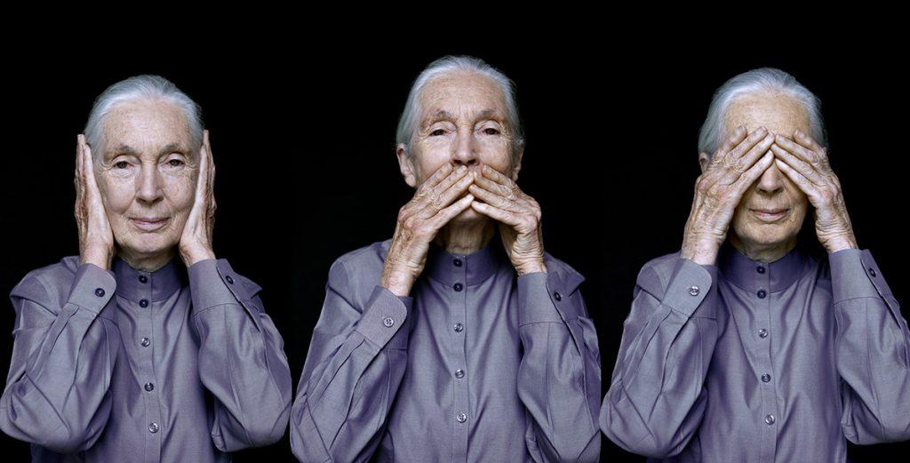 Jane Goodall, Vienna 2011