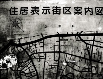 Map with self portrait, Tokyo, Japan 2012