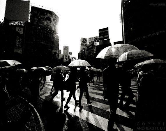 Shibuya Crossing, Tokyo, Japan 2012
