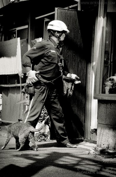 Street situation, Tokyo, Japan 2012