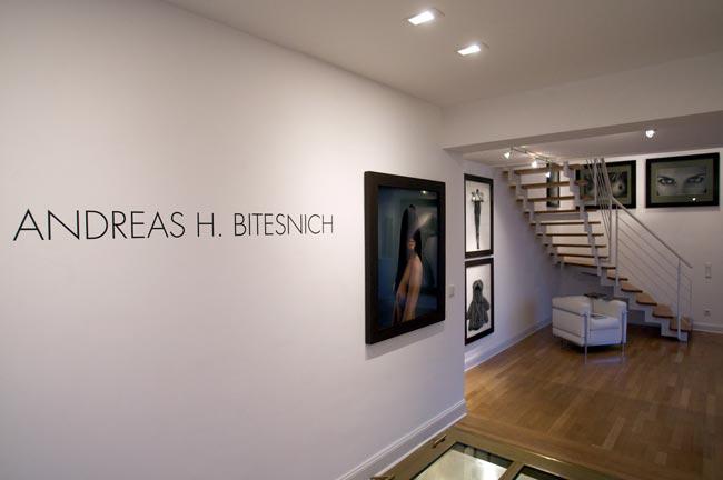 Bitesnich-Exhibition-20120322_Rheingalerie_027