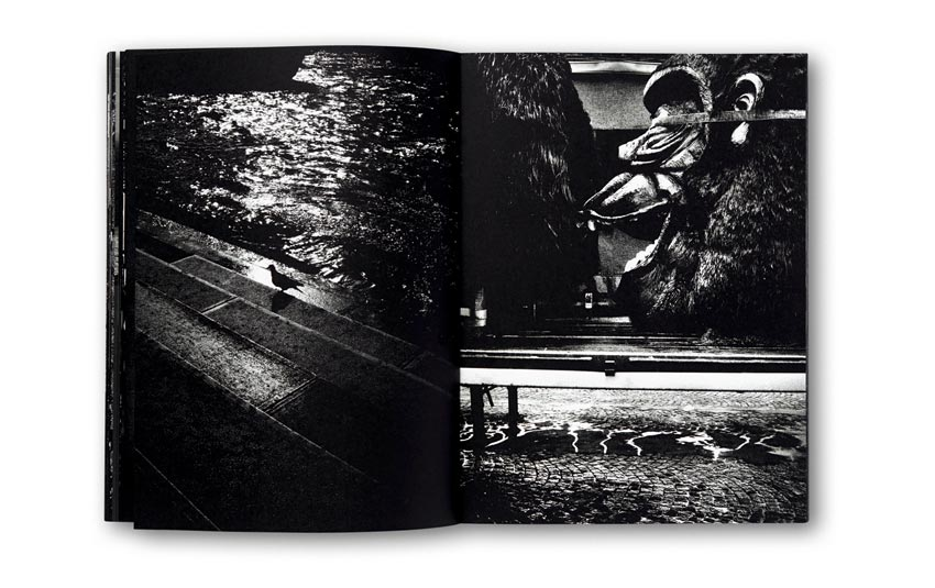 Andreas_H._Bitesnich_Deeper_Shades_Paris_book_2454