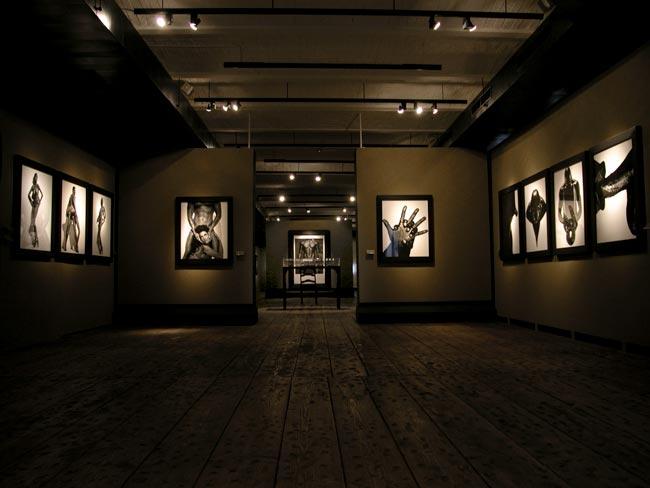 Bitesnich-exhibition_Kunsthaus_Vienna_2004_7460