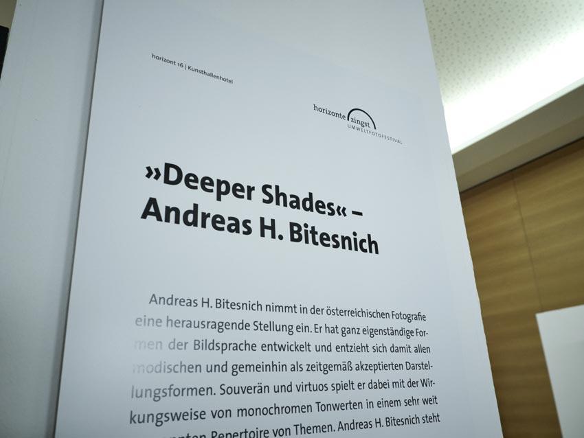 Bitesnich_Deeper_Shades_exhibition_Zingst_2016_5290149